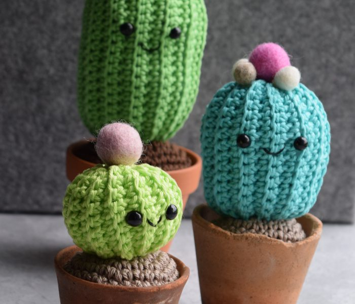 Crochet Cacti Family